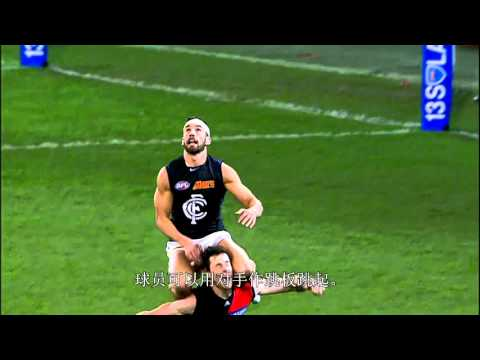 What is AFL? (AFL explained with Chinese subtitles)