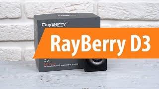 видео Видеорегистратор Rayberry D3