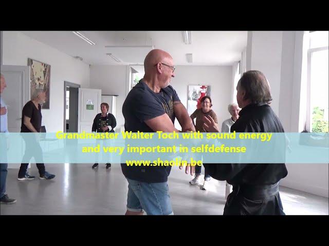 Workshop SELFDEFENSE for beginners by Grandmaster Walter Toch 13 /09/2021 Gentbrugge Belgium