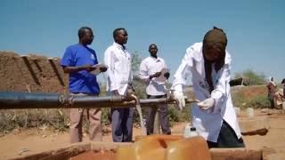WHO's new Health Emergencies Programme