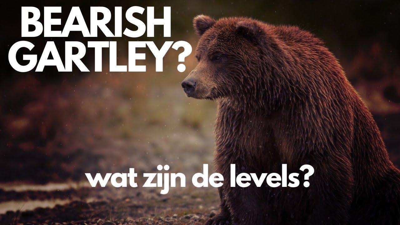 Bearish Gartley? Wat zijn de levels?