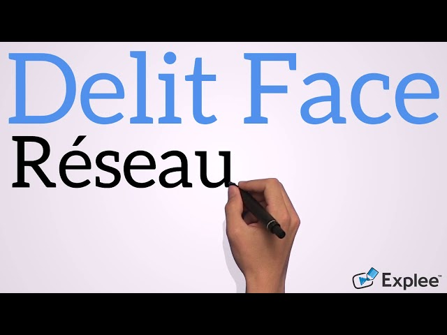 Delit Face - Réseau Social Français