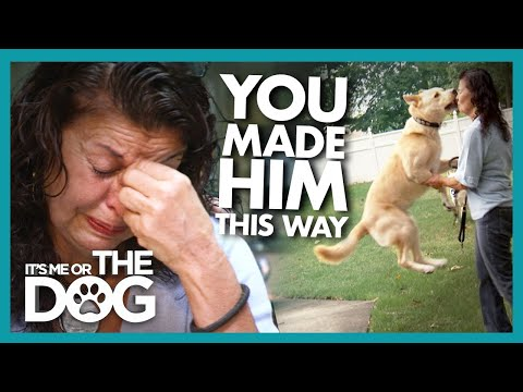 Owner Breaks Down After Victoria Confronts Her With the Truth    It's Me or The Dog