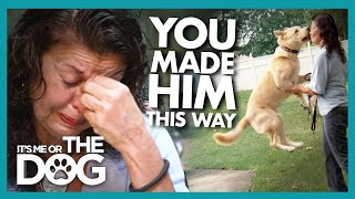 Owner Breaks Down After Victoria Confronts Her With the Truth |  It's Me or The Dog