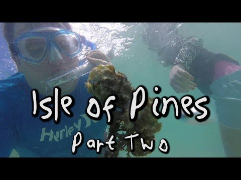 Carnival Legend Cruise VLOG (New Caledonia) Day 6 Isle of Pines Part 2