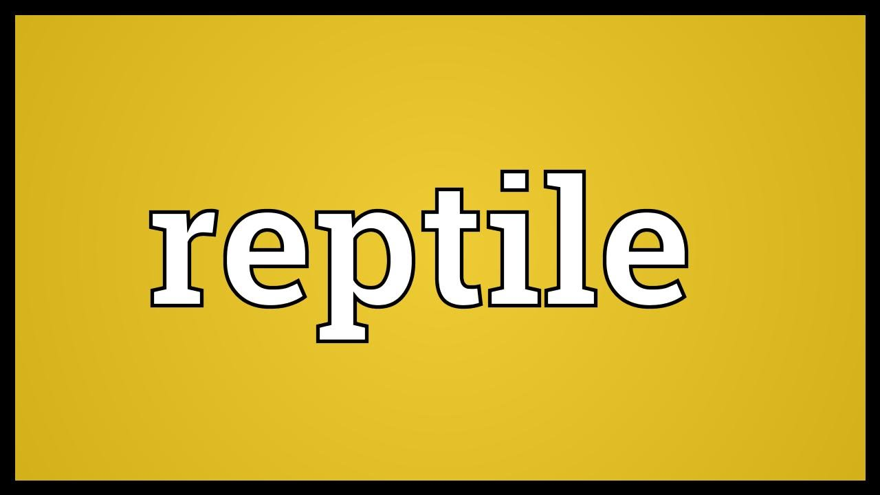 Reptile Meaning