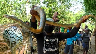 Young man  killed by Cobra snake found after 6 days rescued :Bhadrak,Odisha