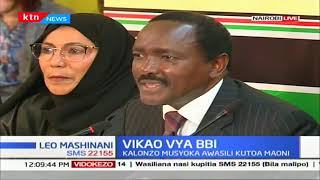 Kalonzo presents Wiper's recommendation to BBI task-force,wants nominated MPs increased to 20