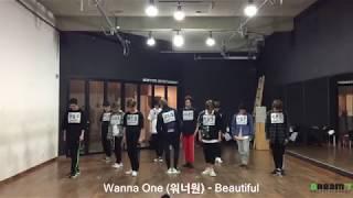 Wanna One (워너원) - 'Beautiful' 안무영상