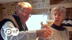 Britischer Wein boomt   DW Deutsch
