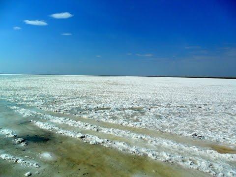 Крымские чудеса. Самое соленое озеро в Крыму - Жизнь в