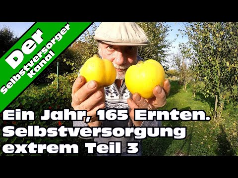 Selbstversorgung extrem  165 Ernten in einem Jahr Teil 3