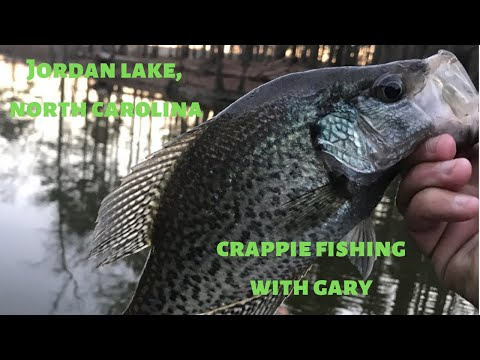 JORDAN LAKE | NC | NIGHT FISHING WITH CRAPPIE LIGHTS