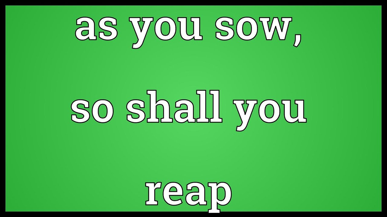 As you sow, so shall you reap Meaning - YouTube