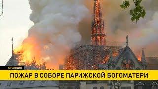 Пожар в Нотр-Дам-де-Пари: хронология и подробности трагедии