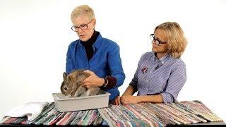 Do Rabbits Need to Be Bathed? | Pet Rabbits