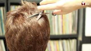 How to Thin Out Thick hair - Haircutting Techniques
