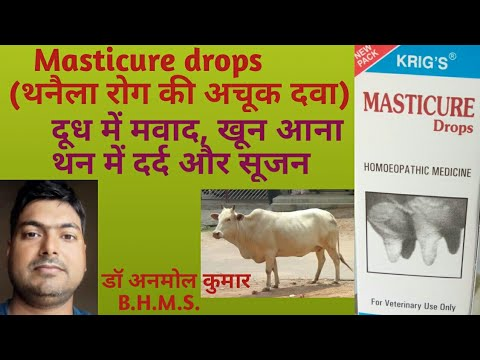 Download Masticure drops for Mastitis//थनैला, थनैला में दर्द, सूजन, दूध में खून आना, थन छोटा //डॉ अनमोल कु.