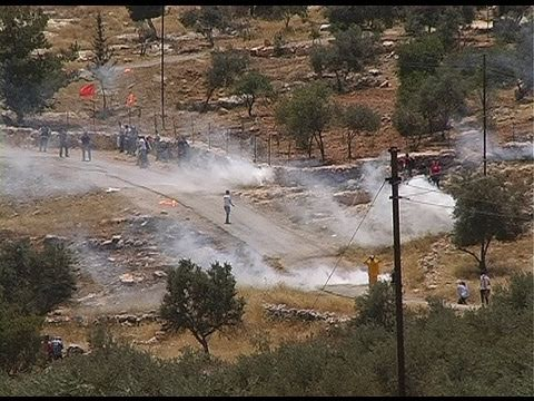 protests against the construction of the West Bank Barrier