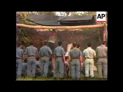 Download GUATEMALA: TWO MEN EXECUTED BY FIRING SQUAD