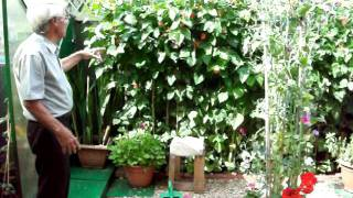 Gardening Tips with Dennis Hubbard No. 49