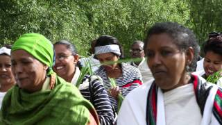 a brief history of oromo people