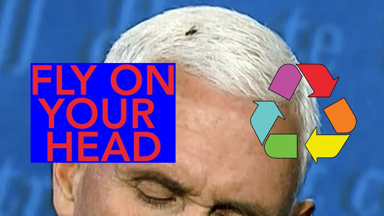 Mike Pence Fly Remix