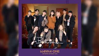 WannaOne(워너원)_Beautiful / coverdance / SUEクリスマス公演2019