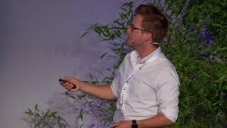 Benutzer! International R-Benutzer-Konferenz 2017 FFTrees Ein R-Paket zu erstellen, zu visualisieren und zu verwenden, schnell eine