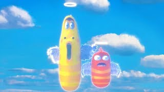 LARVA - LARVA ANGELS | Cartoon Movie | Cartoons For Children | Larva Cartoon | LARVA Official