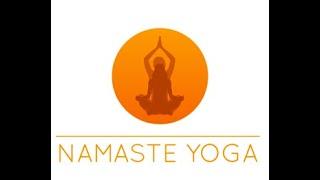 Namaste yoga Grenoble séance pour le dos 2