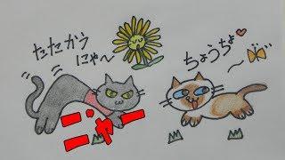 今日も見回りに忙しい猫ちゃん!花に癒されることも無く庭をウロウロ=З...