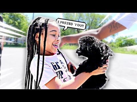 VISITING CALI'S PUPPY **emotional**