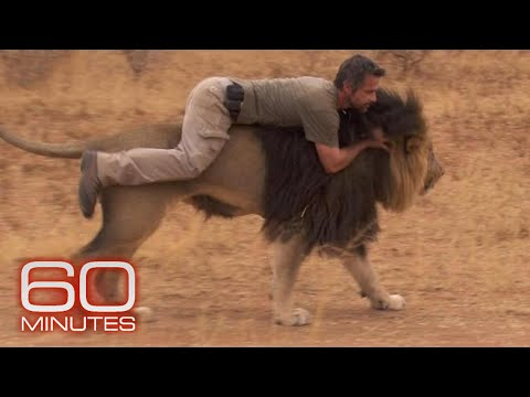 Preview: The lion whisperer