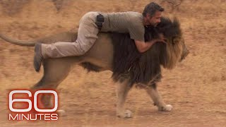 Strong Friendship Between a Man and His Lions