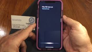2020 iPhone 11 Pro Max, iOS 13.5 Accessibility Features for Low-Vision