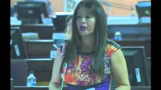 Sesión 382 del Pleno (14-04-2016)