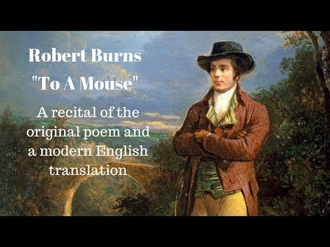 Robert Burns Poem: To A Mouse + Modern English Translation