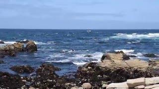 Restless Sea (17 Miles Drive)