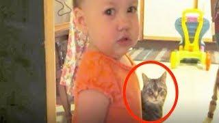 Mutter filmt heimlich, was ihre Tochter und die Katze machen und glaubt nicht was sie sieht