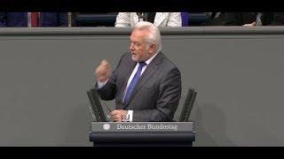 """Bundestagsdebatte um Yücel: """"Intellektuell erbärmlich"""" - Kubicki liefert sich Schlagabtausch mit AfD"""
