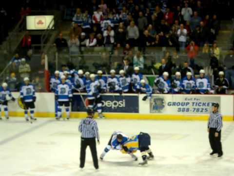 Wenatchee Wild vs Alaska Avalanche Hockey Fight