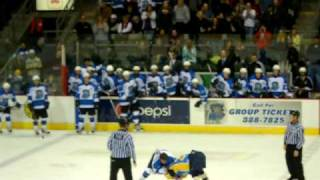 Wenatchee Wild vs Alaska Avalanche Hockey Fight