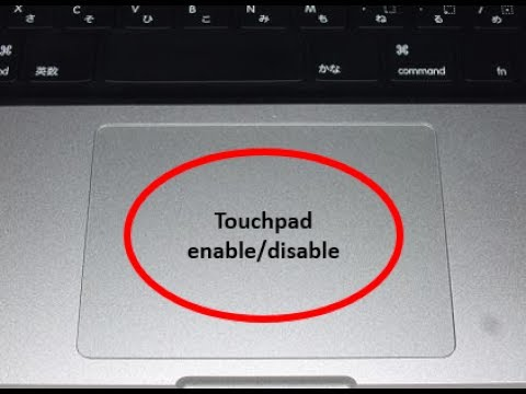 how to unlock a laptop touchpad hp
