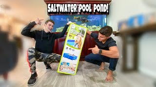i-got-a-saltwater-pool-pond-for-my-fish
