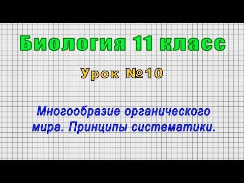 Биология 11 класс (Урок№10 - Многообразие органического мира. Принципы систематики.)