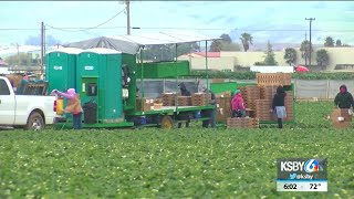 Organizations team up to advocate for farmworkers after recent COVID-19 outbreaks