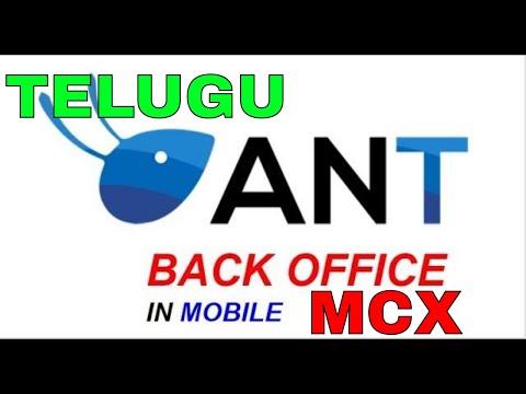 Mobile Backoffice In Aliceblue Commodity Expert Tips Telugu
