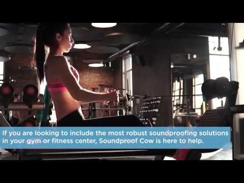 Gymnasium soundproofing soundproof cow