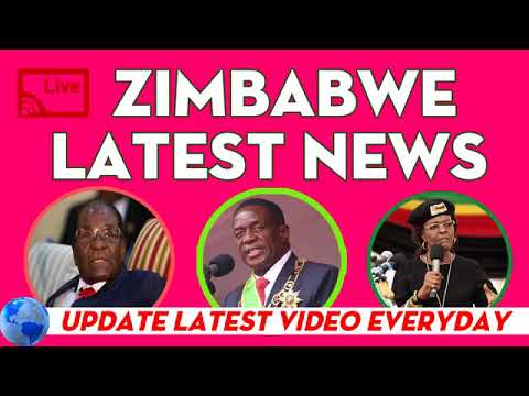 3 farmers from Limpopo leaving for Zimbambwe after signing a lease agreement | Times live news